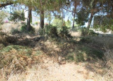 Site in Mallorca (Mallorca), buy cheap - 410 000 [63425] 2