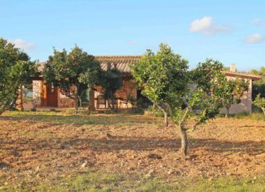 Villa in Mallorca (Mallorca), buy cheap - 550 000 [63409] 3
