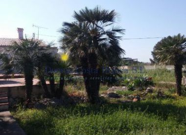 Site in Denia (Costa Blanca), buy cheap - 200 000 [64708] 3