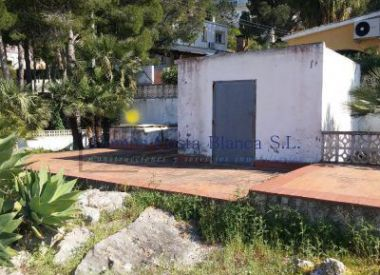 Site in Denia (Costa Blanca), buy cheap - 200 000 [64708] 5