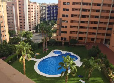 3-room flat in Benidorm ID:65013