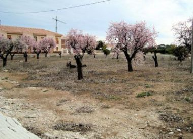 Site in Parcent (Costa Blanca), buy cheap - 147 000 [65605] 3