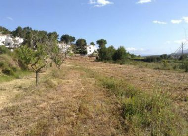 Site in Moraira (Costa Blanca), buy cheap - 225 000 [65701] 1