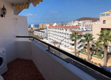 Apartments in Los Cristianos (Tenerife), buy cheap - 159 000 [66275] 5