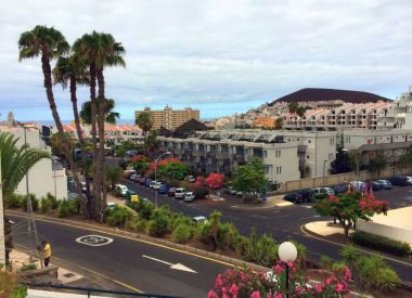 Apartments in Los Cristianos (Tenerife), buy cheap - 159 000 [66275] 8