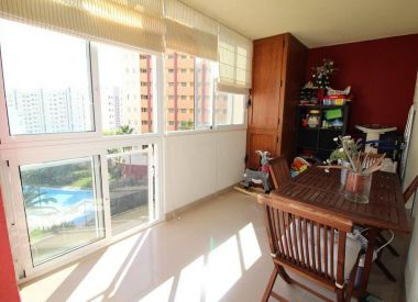 Apartments in Benidorm (Costa Blanca), buy cheap - 238 000 [66354] 2
