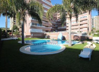 Apartments in Benidorm (Costa Blanca), buy cheap - 215 000 [66358] 1