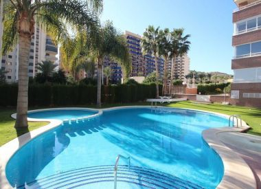 Apartments in Benidorm (Costa Blanca), buy cheap - 215 000 [66358] 2