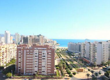 Apartments in Benidorm (Costa Blanca), buy cheap - 215 000 [66358] 4