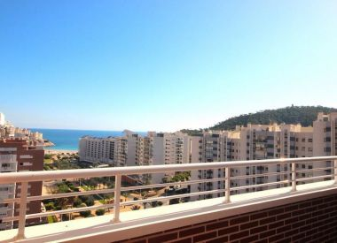 Apartments in Benidorm (Costa Blanca), buy cheap - 215 000 [66358] 6