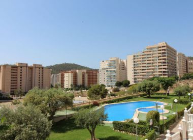 Apartments in Benidorm (Costa Blanca), buy cheap - 120 000 [66488] 1