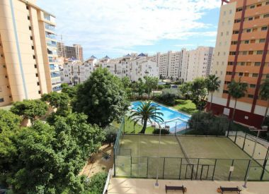 Apartments in Benidorm (Costa Blanca), buy cheap - 238 000 [66512] 1