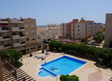 Apartments in Cabo Roig ID:66552