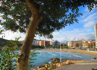 Apartments in Benidorm (Costa Blanca), buy cheap - 85 000 [66564] 4