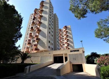 Apartments in Valencia (Costa Blanca), buy cheap - 167 000 [66611] 2