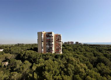 Apartments in Valencia (Costa Blanca), buy cheap - 167 000 [66611] 8