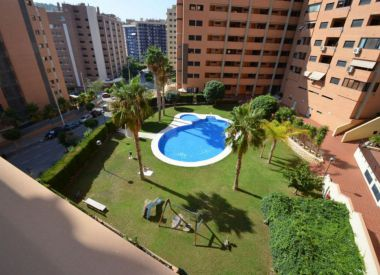 Apartments in Benidorm ID:66734