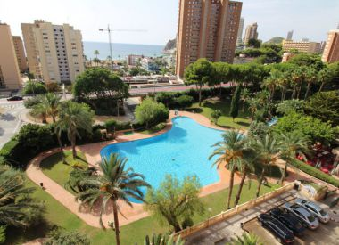 Apartments in Benidorm ID:66741