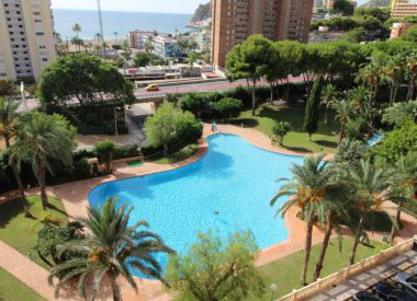 Apartments in Benidorm ID:66742