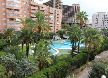 Apartments in Benidorm ID:66800