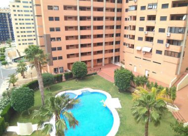 Apartments in Benidorm ID:66842
