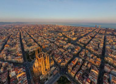 Ready business in Barcelona ID:66916