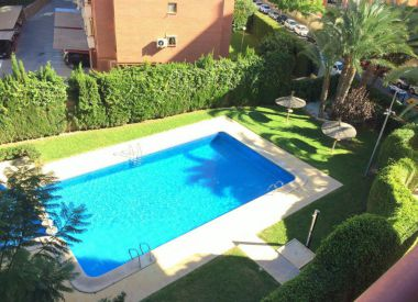 Apartments in Alicante ID:70407