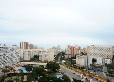 Apartments in Alicante ID:70402