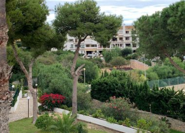 Townhouse in Cabo Roig ID:68543